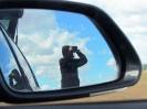 Birdwatching z auta